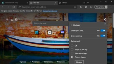 Photo of В браузер Microsoft Edge добавили скриншоты и поддержку тем