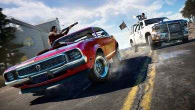 Photo of Кооперативный режим в Far Cry 5
