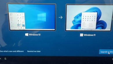 Photo of Microsoft предлагает установить Windows 11 через Windows 10 OOBE